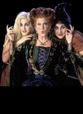 Hocus Pocus Halloween Witches Movie Fan T Shirt